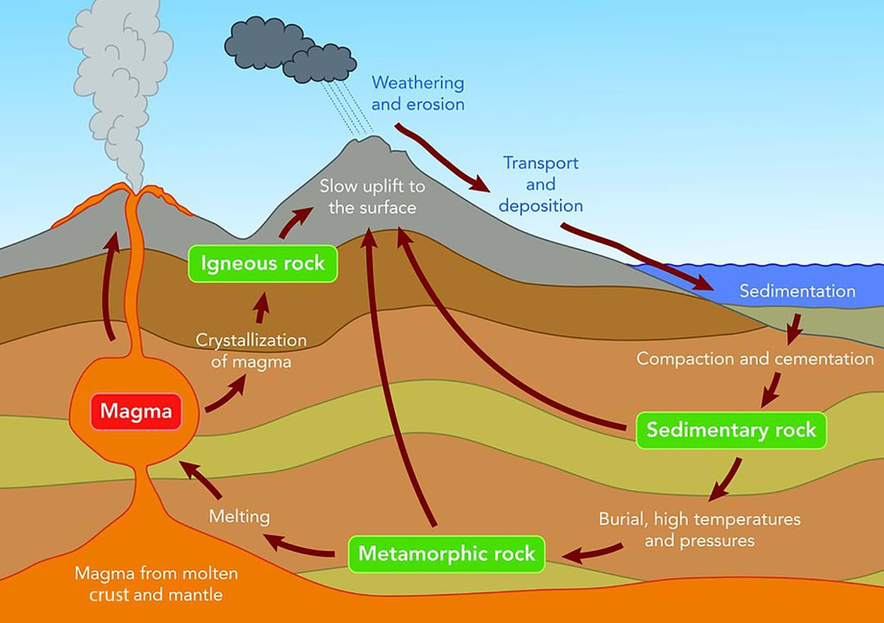 A colorful graphic image shows the rock cycle. Igneous rocks are formed from the cooling and crystallization of magma or volcanic eruptions (lava). Igneous rocks wear down from weathering and erosion into sediments that become sedimentary rocks through deposition and lithification. Through heat, pressure and stress, sedimentary rocks become metamorphic rocks. Metamorphic rocks may either melt into magma or break down into sediments from weathering and erosion. So the cycling of material continues between igneous, sedimentary and metamorphic rocks.