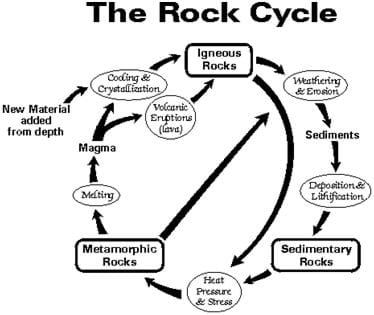 A circular line drawing shows the rock cycle. Igneous rocks are formed from the cooling and crystallization of magma or volcanic eruptions (lava). Igneous rocks wear down from weathering and erosion into sediments that become sedimentary rocks through deposition and lithification. Through heat, pressure and stress, sedimentary rocks become metamorphic rocks. Metamorphic rocks may either melt into magma or break down into sediments from weathering and erosion. So the cycling of material continues between igneous, sedimentary and metamorphic rocks.