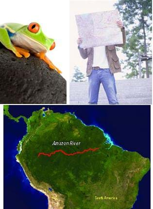 Three images: Photo of a man reading a paper map. Map of northern half of the South American continent showing the Amazon River as a long red line across a deep green region. Photo of a bright green frog with orange feet and bulging red eyes on a black rock.