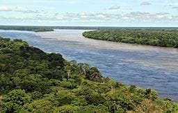 An aerial view of the Amazon rainforest showing a wide river winding through dense green forests.