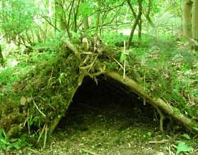 A shelter made of big leaves, plants and sticks in the forest.