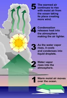 A diagram illustrates the process of water vapor rising and condensing to form clouds. Step 1: Warm moist air moves over the ocean. 2: Water vapor rises into the atmosphere. 3: As the water vapor rises, it cools and condenses into liquid droplets. 4: Condensation releases heat into the atmosphere, making the air lighter. 5: The warmed air continues to rise with moist air from the ocean taking its place, creating more wind.