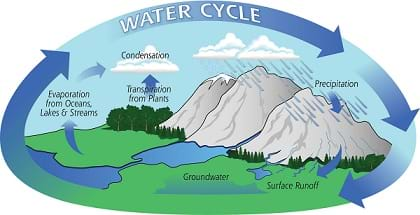 A graphic shows the water cycle with identification of evaporation, transpiration, condensation, precipitation, surface runoff and groundwater.