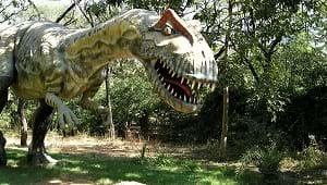 http//Carbon dating dinosaur bein Michigan online dating gratis