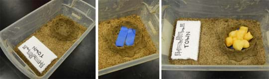 "Three photos show (left) added to the tub of sand described in Figure 1, a ""nest"" of clay in the tub, far away from the town, (middle) two strips of blue plastic laid inside the clay ""nest,"" and (right) about 10 wet, yellowish cotton balls filling the plastic-lined clay ""nest."""