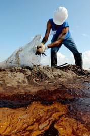 A photo shows a man in a hard hat and gloves collecting oil-covered sticks from a beach.
