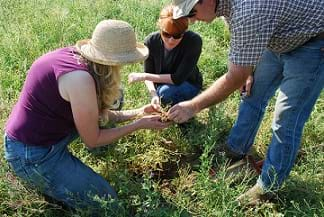 Three conservationists discuss soil health.