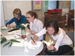 Photo shows three woman at a table closely examining lilies and sketch ideas.