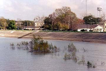 The Mississippi River levee at Gretna, Louisiana. The image shows high water on the Mississippi covering plants along the river side of the levee; the levee protects the town of Gretna from flooding.