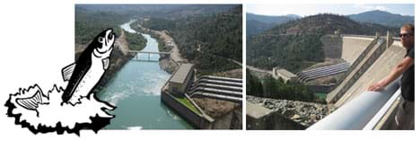 A line drawing of a jumping fish overlaps two photos that show the huge concrete structure of a dam looking upstream from below the dam, and looking downstream at a curving narrow river below the dam.