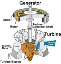 Line drawing shows parts of a generator and turbine, including turbine generator shaft, rotor, stator, wicket gate and turbine blades.