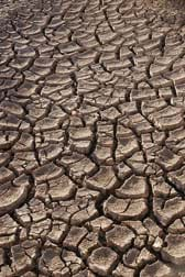 Photo shows deep cracks in extremely dry soil.