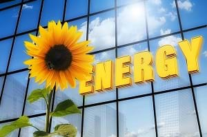 A sunflower in front of a building with the clouds and an energy sign indicating solar energy.