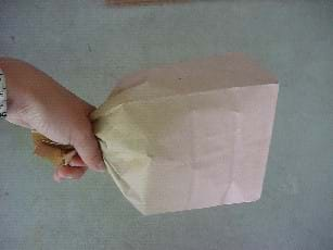 Photograph of a hand holding the neck of a closed a paper bag, plump with air.