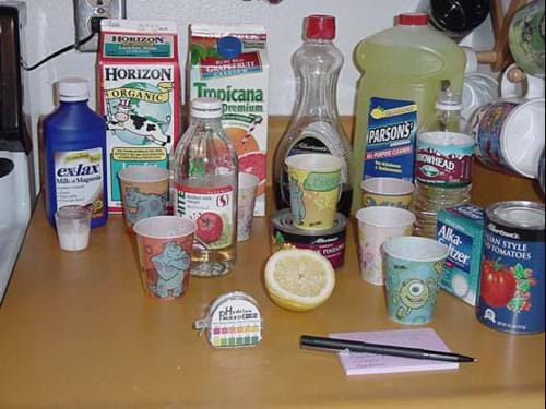 Photograph of the ingredients to complete this experiment including paper cups, oil, milk, OJ, vinegar, juice and pH paper.