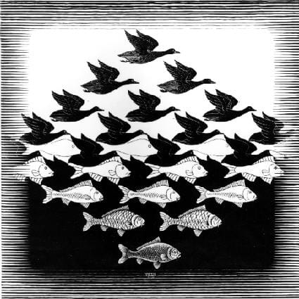 A line drawing that repeats the image of a flying bird with subtle changes until the negative spaces between the images start to resemble fish and the birds become the negative space between the fish images.