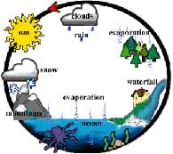 Cyclic diagram shows the sun, clouds, trees, mountains, ocean and waterfall, linked by evaporation, transpiration and precipitation.