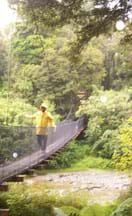 A person in a yellow slicker walks on long narrow bridge over a stream.