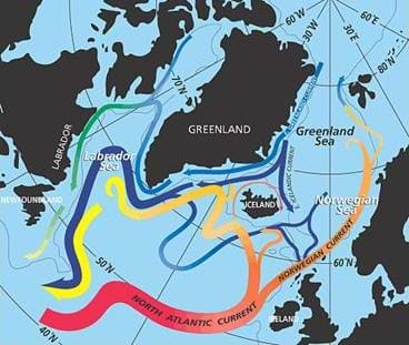 Drawing of the continents with the major ocean currents.