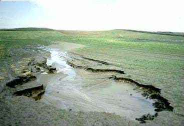 Photo shows a field with a muddy pool cut out of the land that has been caused by water erosion.