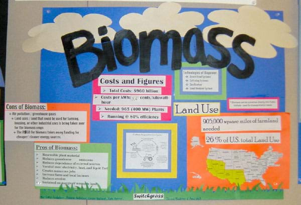 ... benefits, costs, statistics and technologies of biomass energy