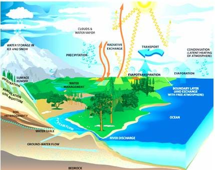 A colorful drawing depicting the water cycle. Shown is a landscape with mountains. A blue river flows from the mountains through farmland and trees, and finally into an ocean. Arrows depict all of the process of the water cycle: evaporation, transpiration, condensation and precipitation.