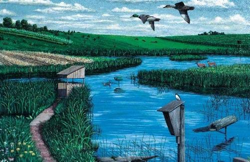 An artist's depiction of numerous improvements that can be made to restored wetlands to enhance the wetlands for benefits to wildlife. Scott Patton, artist.