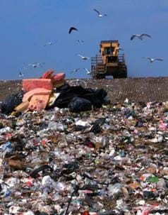 A colorful photograph of a garbage landfill show acres of trash with a big bulldozer and hovering vultures.