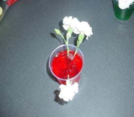 A photograph of a cup containing red-colored, contaminated water and three carnations.