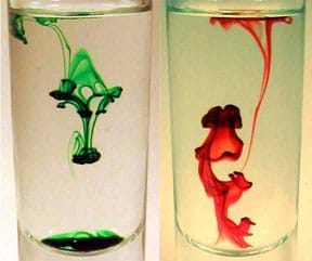 Food coloring makes patterns in glasses of clear liquids.