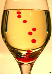 Round, red droplets are suspended in amber liquid in a wine glass.
