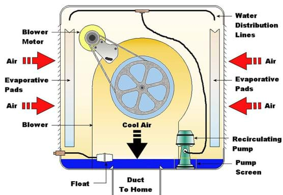 A cutaway diagram shows various components (blower motor, evaporative pads, blower, water distribution lines and pump) and arrows indicating air flow direction.