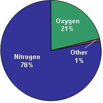 Image of a pie chart showing 21% oxygen (green), 78% nitrogen (blue), and 1% other (brown), representing the composition of the Earth's air.