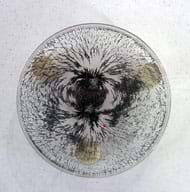 Photo shows arching patterns of iron filings on a Petri dish balanced on a bar magnet.