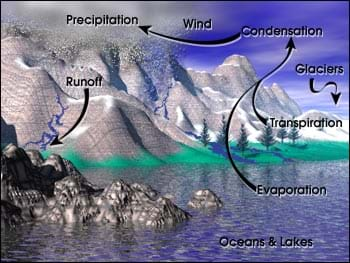 A landscape diagram with arrows to show the movement of water via evaporation, transpiration, condensation, wind, precipitation and runoff.