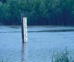 Photo shows a tall white post in the midst of a body of water.