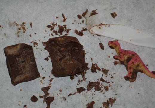 Photo shows a chunk of chocolate with the imprint of a plastic toy dinosaur in it.