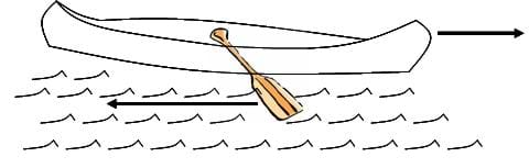 A line drawing shows a canoe with one paddle in the water. Arrows show that the motion of the paddle on the water causes the canoe to move in the other direction.