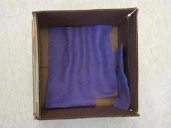 Photo looking into a box from above with blue felt on the bottom and one inner side wall.