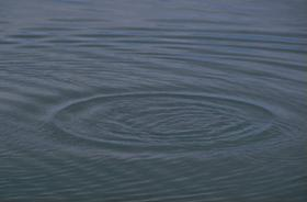 Photograph of ripples on a pond.