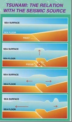 Image of four vertical panels illustrating how tsunamis are formed. From the bottom up, the ocean floor lifts up at a fault, forming and then pushing up a wall of water. The water then flows away from the fault, creating a wave of water that increases in height (amplitude) as it moves toward shore.