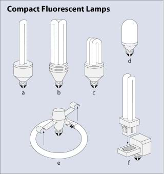 A drawing shows different shapes of CFLs.