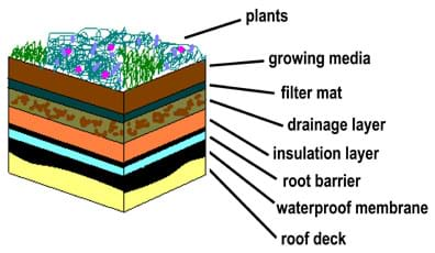 Diagram shows a cut-away drawing of a roof garden with layers identified (bottom to top): roof deck, waterproof membrane, root barrier, insulation layer, drainage layer, filter mat, growing media (soil) and plants.
