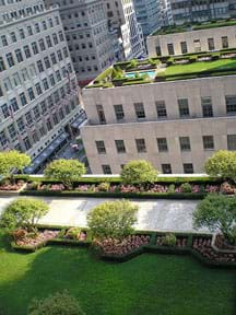 Aerial photo shows grass, trees, flowers and a walkway covering the top of a skyscraper, with two other rooftop gardens on nearby skyscraper roofs.