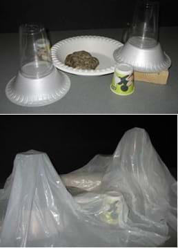 Two photos: An arrangement of cups, plates, bowls, rock and wooden block, then covered by a white plastic trash bag to form the catchment terrain.