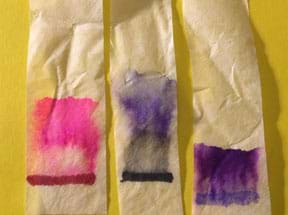 A photograph shows three strips of coffee filter paper after the activity. Original permanent marker lines of red, black and purple ink have each separated into color variations and moved up higher on the paper, for example, the black ink has separated into a black/gray area and a dark blue area.
