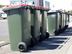 Photo shows trashcans lined up on the curb on waste collection day.
