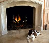 Photo of a dog sitting in front of a fireplace.