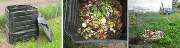 Three photos: 1) a ~3 x 3-ft black plastic bin with a lid, 2) looking into the bin to see a pile of vegetable trimmings and leaves, and 3) a pile of vegetable trimmings and egg shells inside a 3-ft high circular hoop of open wire mesh Three photos: 1) a ~3 x 3-ft black plastic bin with a lid, 2) looking into the bin to see a pile of vegetable trimmings and leaves, and 3) a pile of vegetable trimmings and egg shells inside a 3-ft high circular hoop of open wire mesh in a grassy backyard. in a grassy backyard.