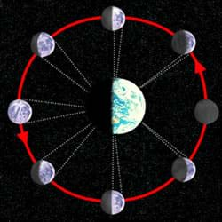 A diagram shows the different phases of the Moon relative to the Earth.